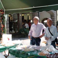 Tolmezzo - Festa della mela